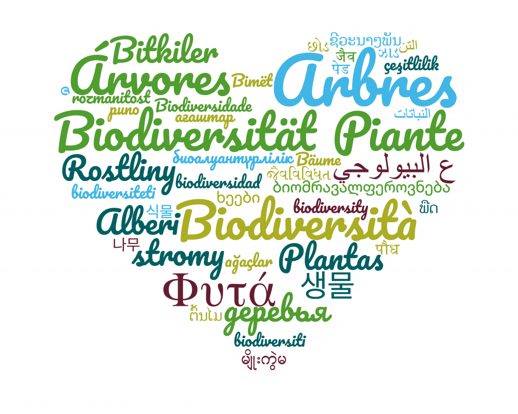 plant related word cloud in many languages